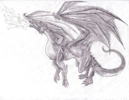Shadow Dragon by AmmyWolf95