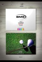 Golf flags flyer by DesignPot