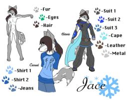 Jace Reference Sheet 2008 by Hero-of-justice