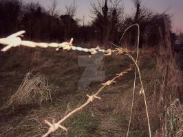 barb wire boundary by ARAart
