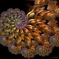 Enchanted Spirals II by Yuline