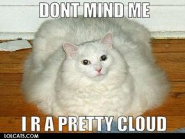 LOLCATS-Cloud by jacob2920