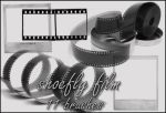 Film brush set by shoe-fly