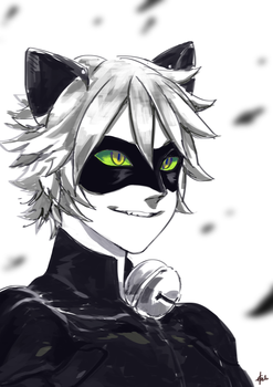 Chat Noir by YUNZ302