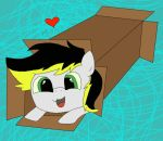 Aero in a box by agitha-and-neytiri-f