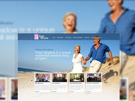 MS  Wp Theme by 11thagency
