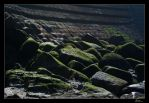 ...on the Rocks by fcarmo-photography