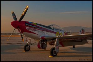 Sparky P-51 D Sunrise Static by AirshowDave