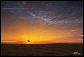 Sunrise in the Maasai Mara by mitchellkrog