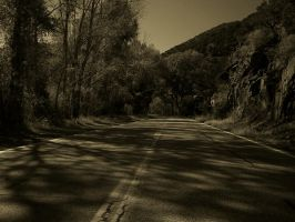 New Mexico Canyon - sepia-tone by Barn0wl