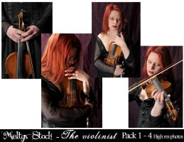 The Violinist - Pack 1 by Meltys-stock