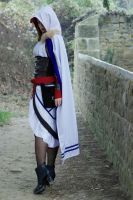 Assassin's Creed Cosplay - own design by SarahBCosplay