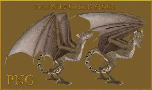 STOCK PNG wyvern by MaureenOlder
