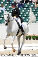 Kim Severson Dressage IV by zeeplease