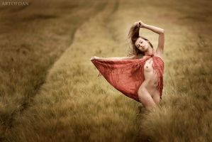 Summer Dance by artofdan70