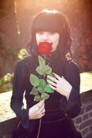 kiss from a rose by Revelio