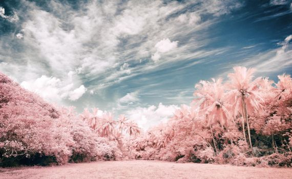 Infrared Jungle by insolitus85