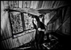 Something's up in the attic.. by MysteriousBabyOwl