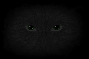 Stare From the Dark DIGITAL by Tsaka