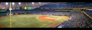 Tropicana Field 1 by EJMPhotography-NC