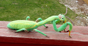 Felted European Praying Mantis Wall Decor by DancingVulture