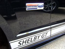 Shelby Powered by Ford badge by Partywave