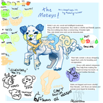 Matey's Species Guide Update by AlphaCyriaWolf