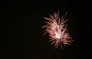 Happy new year 20122013 by afoxen