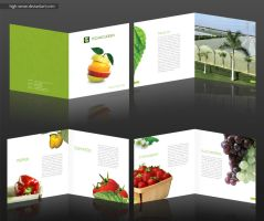 Techno Green Brochure by high-sense