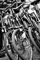 Bicycle Stack Den Haag 2001 by wall-decal-shop
