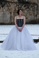 Ice queen stock 76 by Random-Acts-Stock