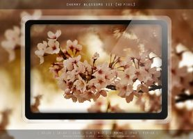 CHERRY BLOSSOMS III by MIATARI