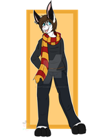 [COM] Harry Potter Cosplay  by CreativeChibiGraphic