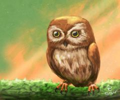 An owl by Ssynahya
