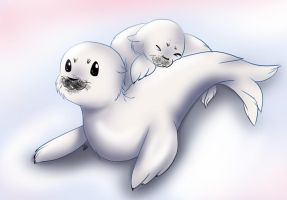 Seal Pups by liliy