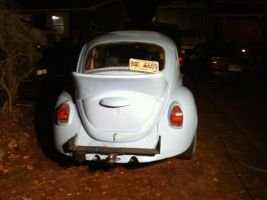 Pic of my bug 13 by NekoVWMike