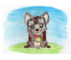 Fly the Chihuahua by Tonceitoys