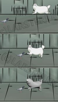 Cat and Pigeon Animation Frame by larsterkk