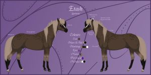 Etash Reference Sheet OLD by Paardjee