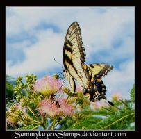 Butterfly 2 by Sammykaye1sStamps