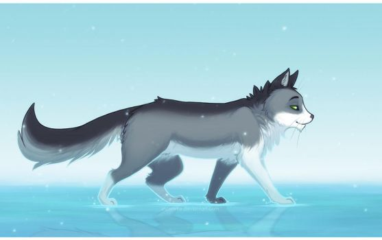 Defying Water by Snowwire