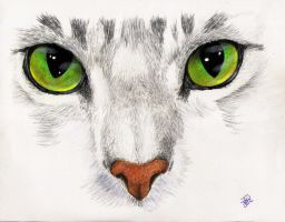 his green eyes by winstonscreator