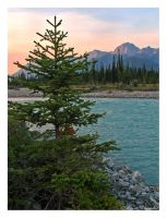 Evening in Kootenay by canuckgurl22