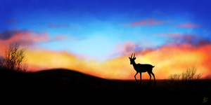 Desert Sunset Speedpaint by VexiWolf