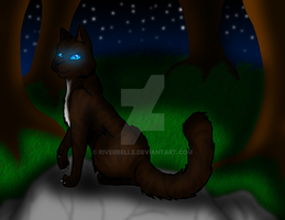 Hawkfrost by RiverBelle