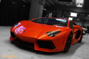 Aventador LP700 b by dart47