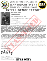 Intelligence Report Red Skull by viperaviator