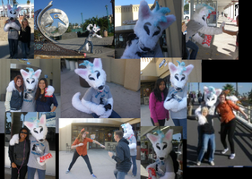 Oceanside Outing Collage by ShadowAndFrost