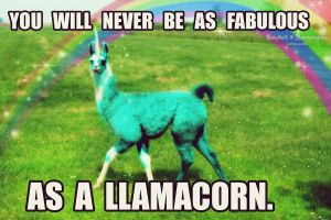 LLAMACORN - Celebrating 50 llamas! Thanks guys! by LuzbeldAuvergne