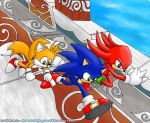 Sonic Heroes - Team Sonic by sonicolas